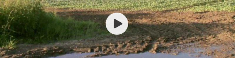 Televizní pořad Nedej se o půdě a Nadaci Pro půdu