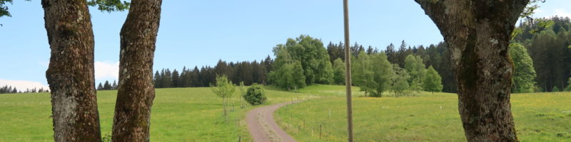 Přístup k půdě pro agroekologické zemědělce v Německu