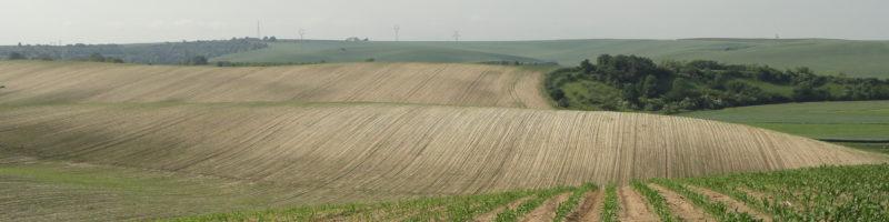 Společné prohlášení odborníků k péči o půdu a vodní zdroje