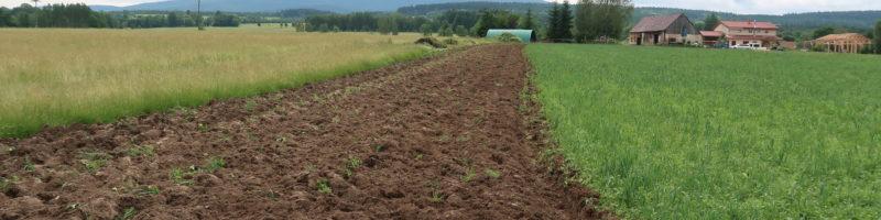 Výsledky průzkumu: člověk a vztah k půdě a krajině