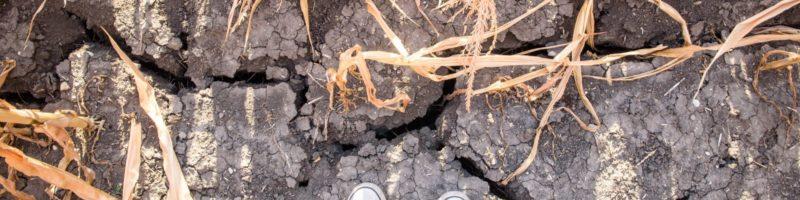 Reportáž v A2larmu: Kdo nebude obnovovat půdu, ať nehospodaří
