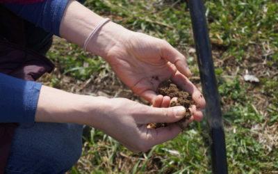 Minuta pro půdu – Mezinárodní den půdy