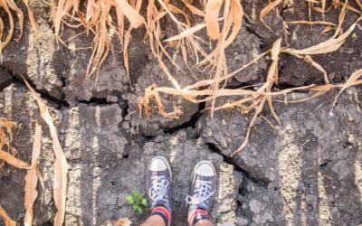 Reportáž vA2larmu: Kdo nebude obnovovat půdu, ať nehospodaří