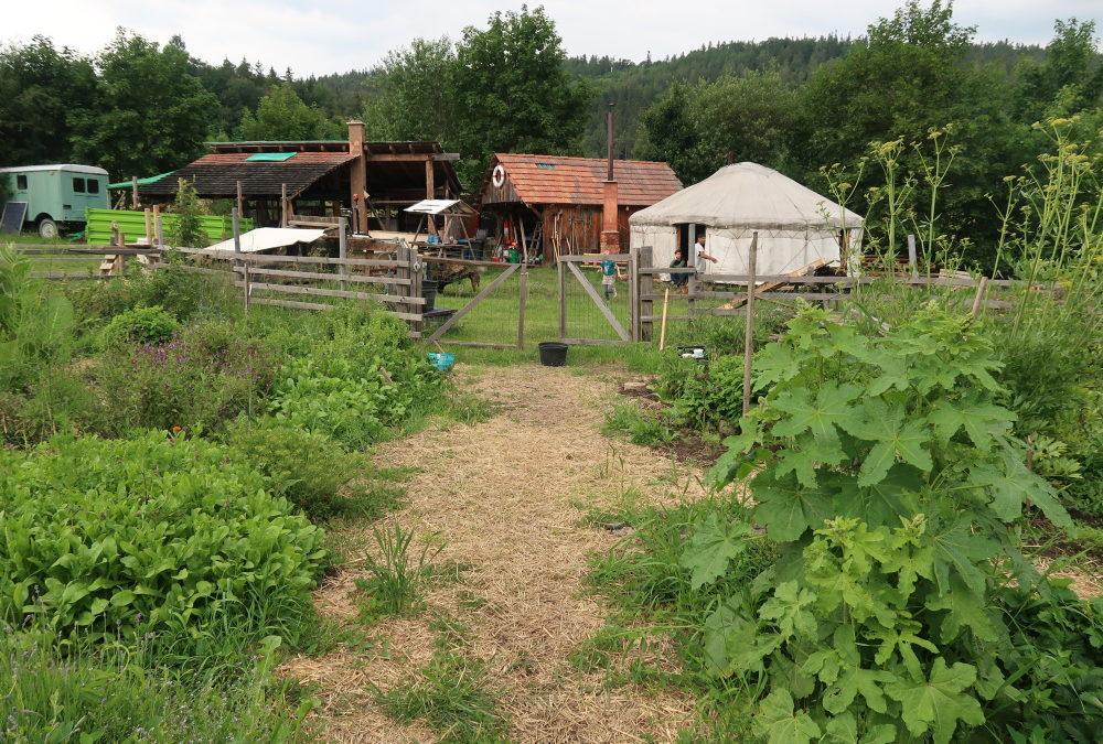 Návštěva pozemků ve Valči: rozmanitá krajina arozvoj komunitou podporovaného zemědělství