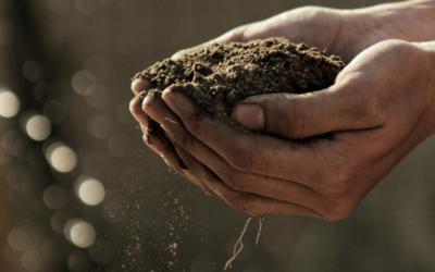 Půda vdenním životě – venkovní aktivity spůdou