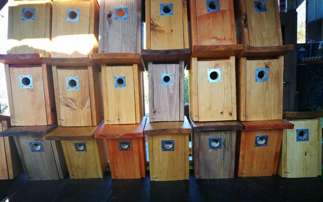 Mezinárodní den ptáků: ptačí budky pro Centrum Konipas